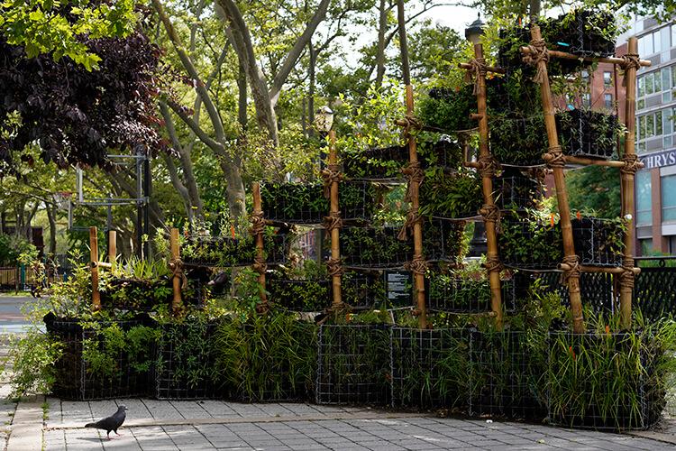 BIRDLINK Habitat Manhattan's Lower East Side