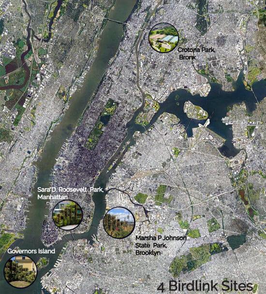 BIRDLINK Locations