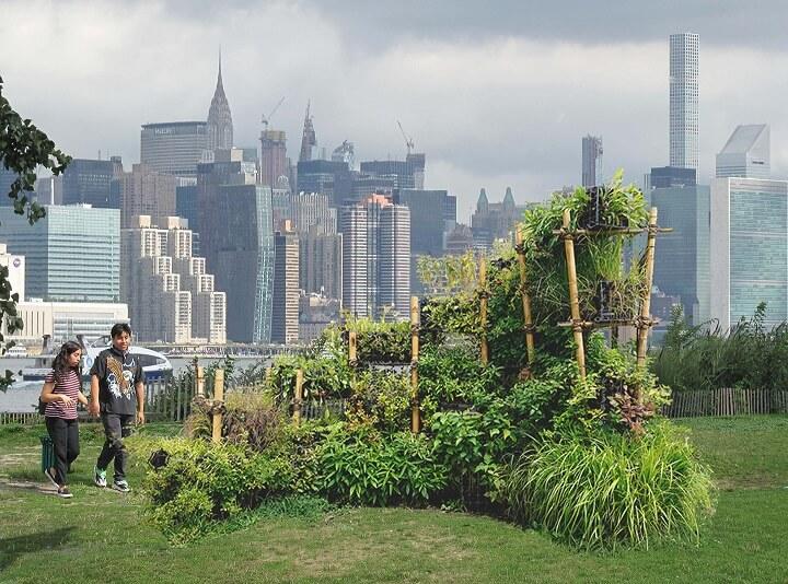 BIRDLINK New York City Vertical Habitat