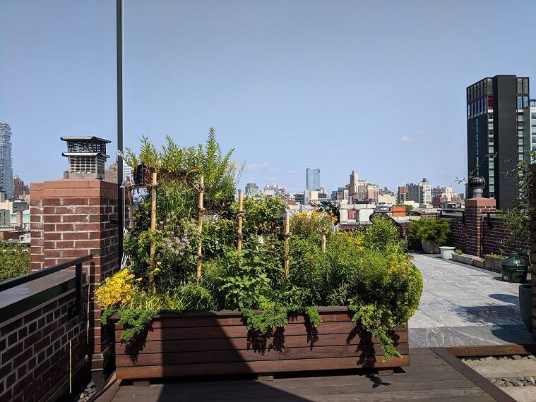 BIRDLINK Rooftop Habitat