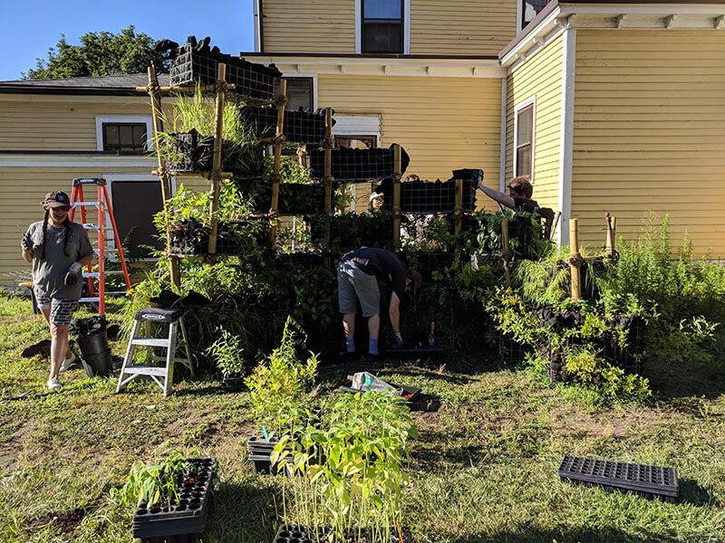 BIRDLINK on Governors Island Summer 2018