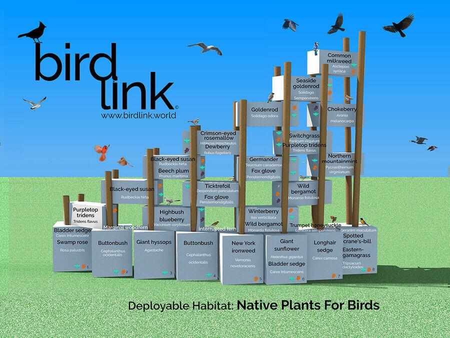 Deployable Habitat for Birds NYC