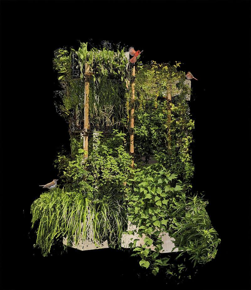 Residential Vertical Habitat BIRDLINK